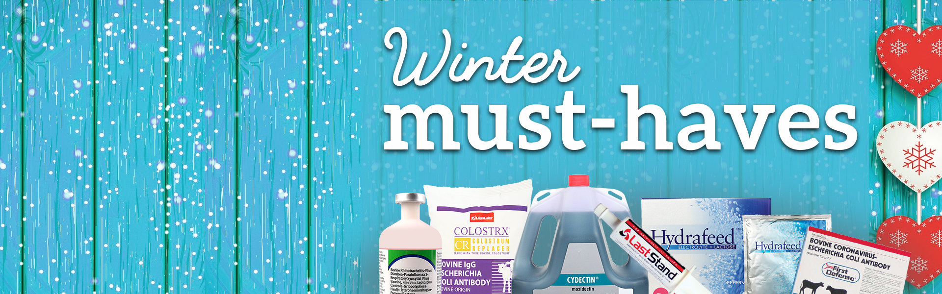 SAVE BIG on winter must-haves