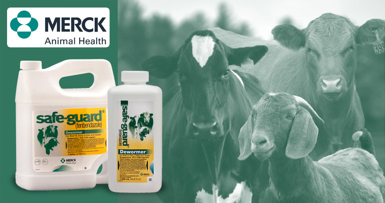 Safe-Guard Cattle and Goat Dewormer Suspension 10%