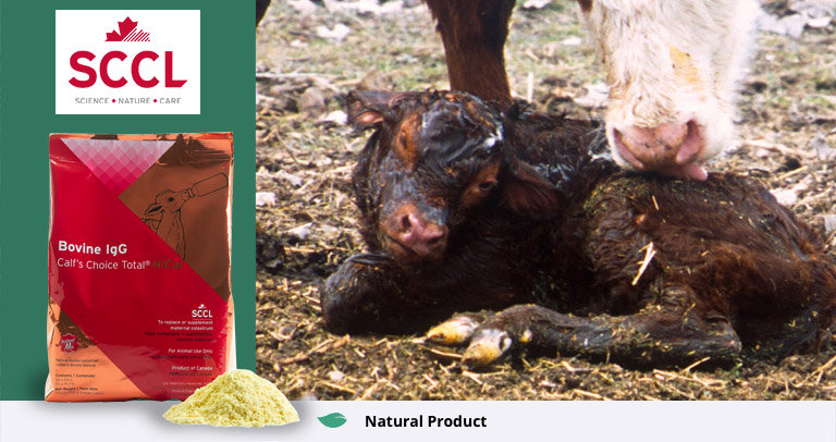 Calf's Choice Total Colostrum HiCal