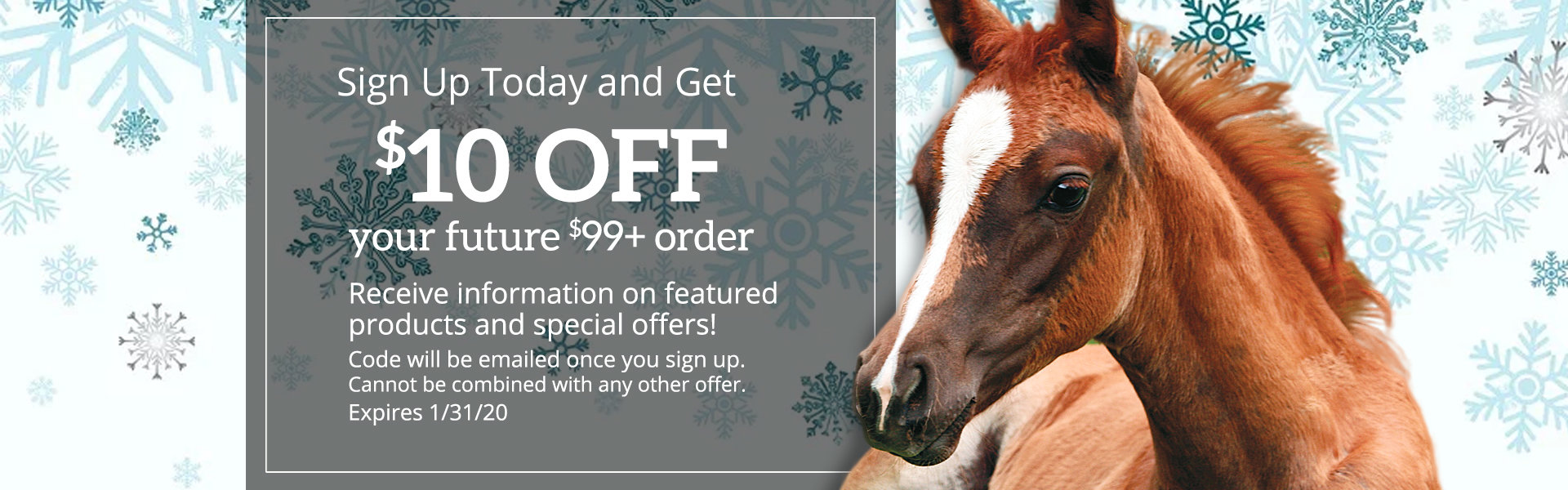 Get $10 off your first order