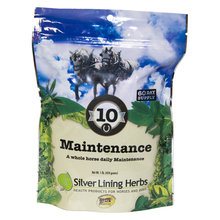 10 Maintenance Support for Horses