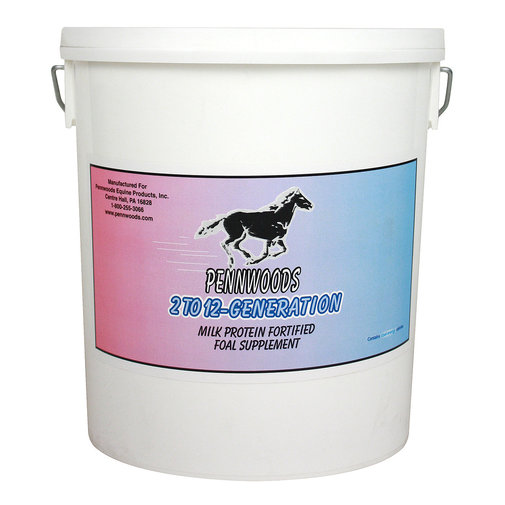 View larger image of 2 to 12 Generation Foal Supplement