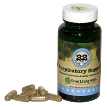 22 Respiratory Support for Dogs