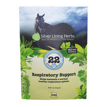 22 Respiratory Support for Horses