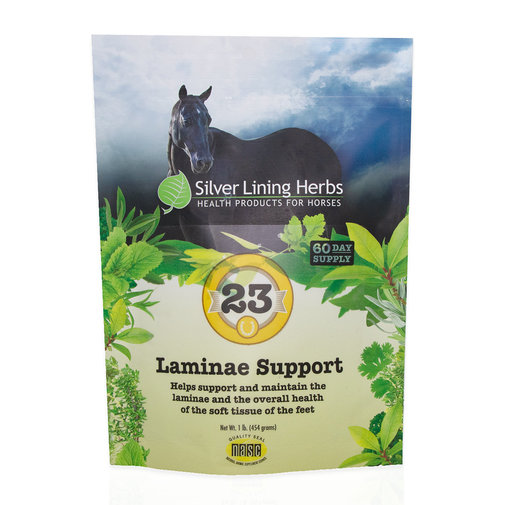 View larger image of 23 Laminae Support for Horses