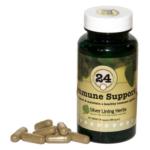 View larger image of 24 Immune Support for Dogs