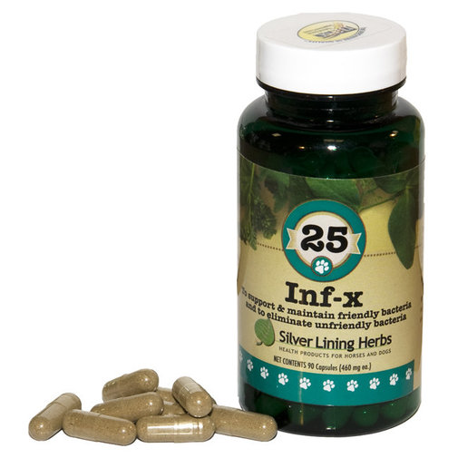 View larger image of 25 INF-X Support for Dogs