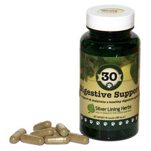 30 Digestive Support for Dogs