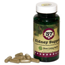 37 Kidney Support for Dogs