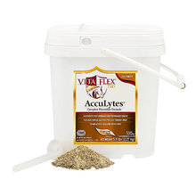 AccuLytes Electrolyte Supplement for Horses