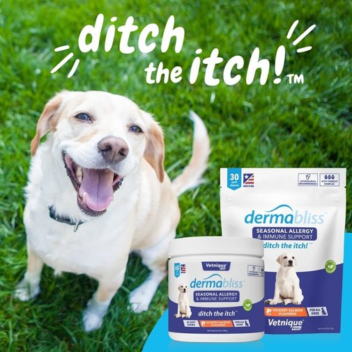 View larger image of Allergy & Immune Soft Chews for Dogs
