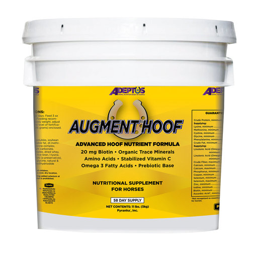 View larger image of Augment Hoof Supplement for Horses