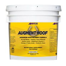 Augment Hoof Supplement for Horses