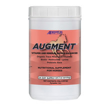 Augment Horse Supplement