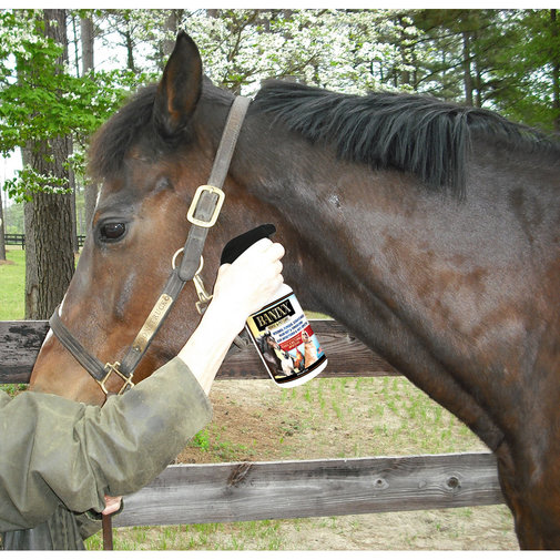 View larger image of Banixx Horse & Pet Care for Fungal and Bacterial Infections