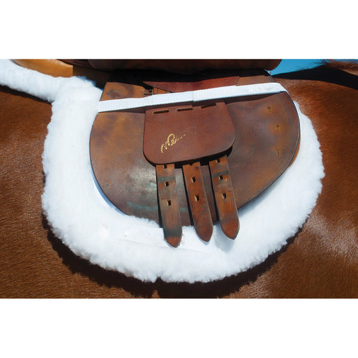 View larger image of BeneFab Therapeutic Fitted Saddle Pad