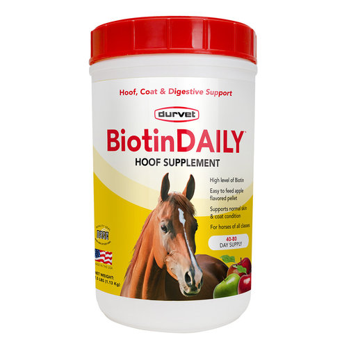 View larger image of BiotinDAILY Horse Supplement