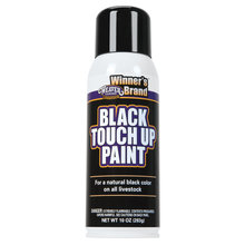 Black Touch Up Paint