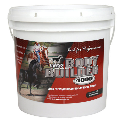View larger image of Body Builder 4000