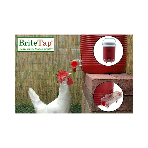 View larger image of BriteTap Automatic Chicken Nipple Waterer
