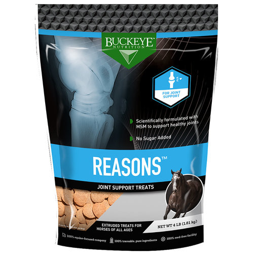 View larger image of Buckeye Nutrition Reasons Horse Treats