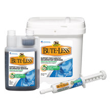 Bute-Less Horse Supplement