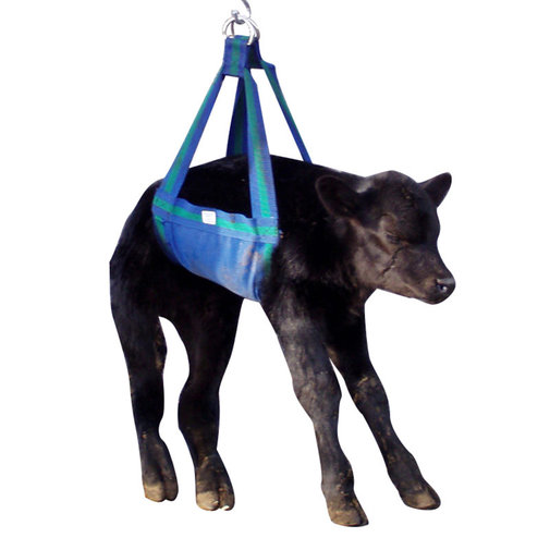 View larger image of Calf Weigh Sling