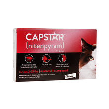 Capstar Flea Treatment for Cats