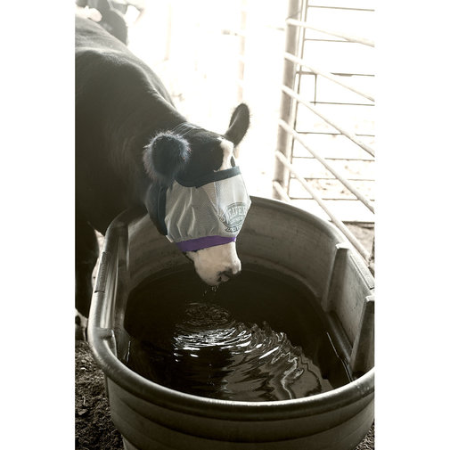 View larger image of Cattle Fly Mask