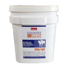 Colostrx CS Colostrum Supplement for Calves