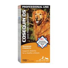 Cosequin DS Maximum Strength Professional