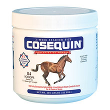 Cosequin Original Joint Health Supplement for Horses