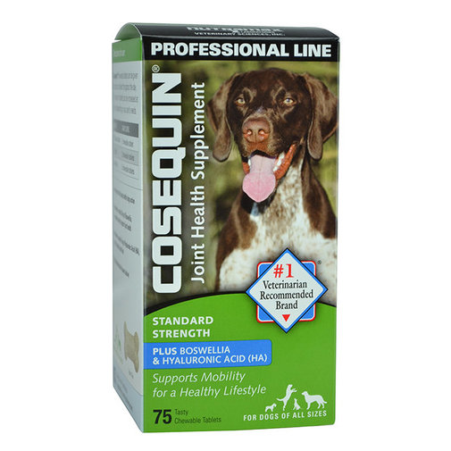View larger image of Cosequin Standard Strength Professional