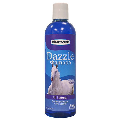 View larger image of Dazzle Shampoo