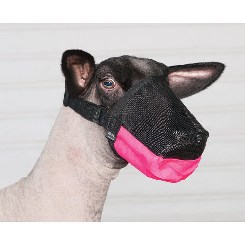 View larger image of Deluxe Adjustable Goat/Sheep Muzzle
