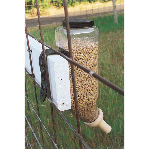 View larger image of Dry Start Feed Bottle