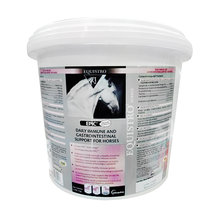 EPIC Daily Immune and Gastrointestinal Support for Horses