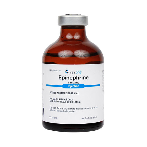 View larger image of Epinephrine Injection Rx