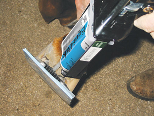View larger image of Equi-Pak Hoof Packing for Horses