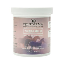 Equiderma Wound Ointment for Horses