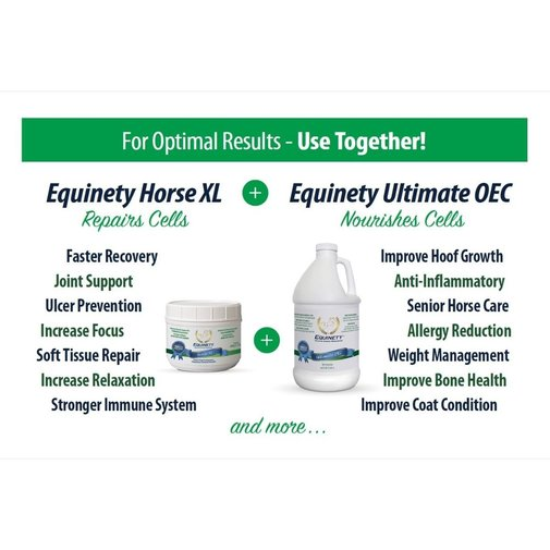 View larger image of Equinety Horse XL Supplement