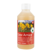Ezee Arnica Gel Lotion