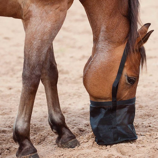 View larger image of Feed Rite Bag for Horses