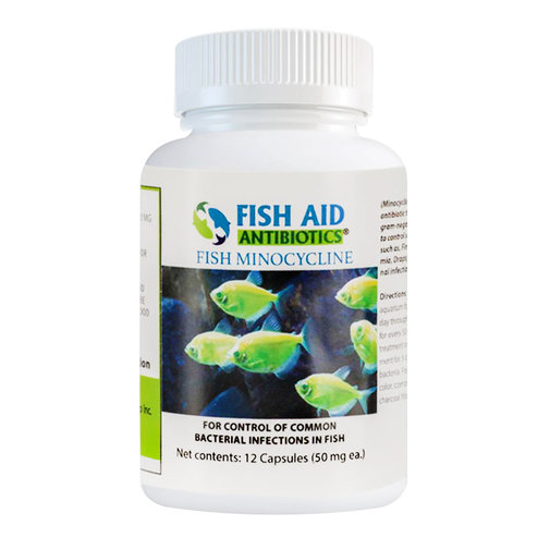 View larger image of Fish Minocycline