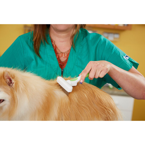 View larger image of Flexible Rake Comb for Dogs