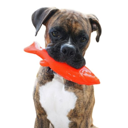 View larger image of Flying Fish Dog Toy