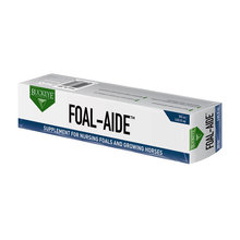 Foal Aide Paste