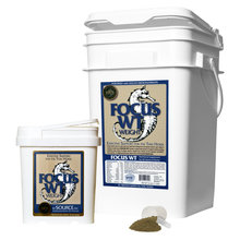 Focus WT Weight Gain Supplement for Horses