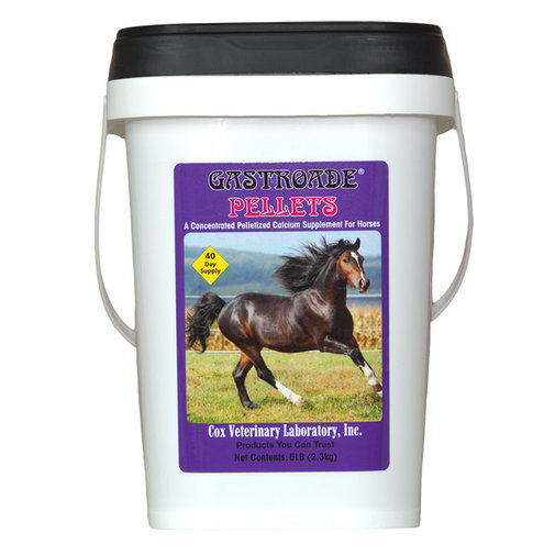 View larger image of Gastroade Calcium Supplement for Horses