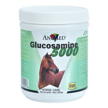 Glucosamine 5000 Horse Supplement